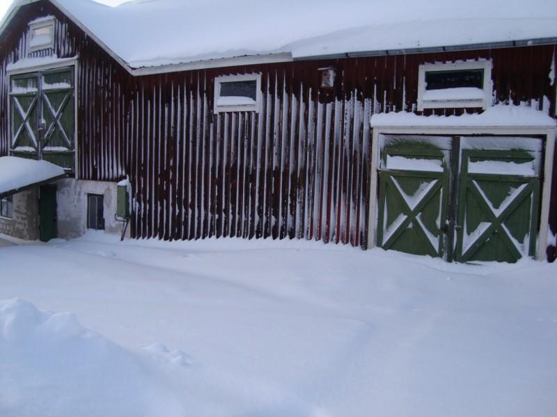 Ladugården/hönshuset/verkstaden/stallet ser inte så varm och inbjudande ut...brrr