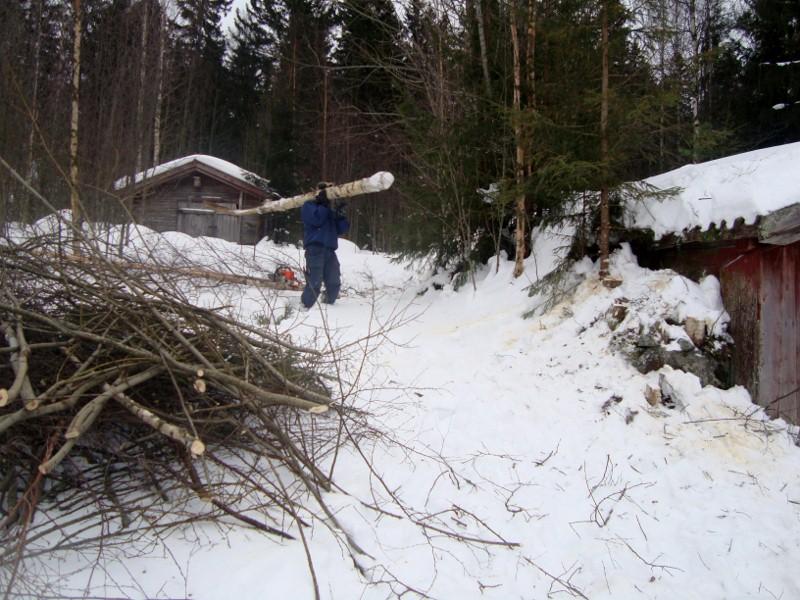 Det är ett hårt jobb att vara skogshuggare! :)