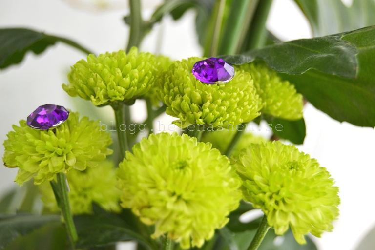 Fina blommor!