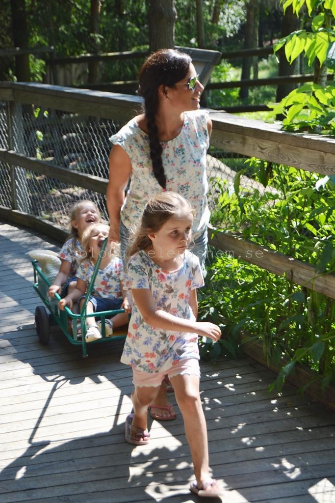 Jag & mina tre döttrar