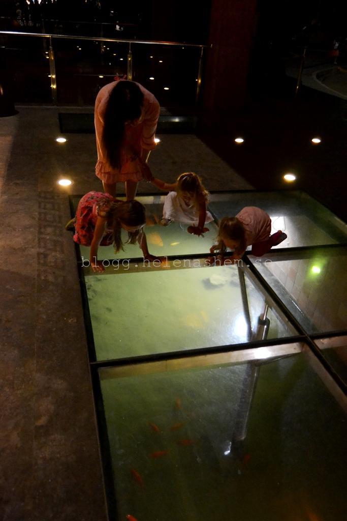 På väg in i hotellet så var det glasgolv där barnen älskade att spana på fiskarna
