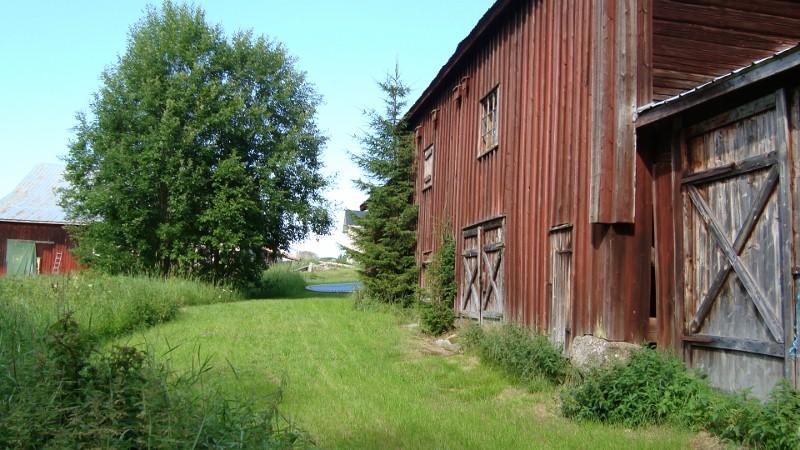 Närmast vår LOGE. Till vänster hönshus/ladugård/verkstad/stall och rakt fram skymtar vårt hus.