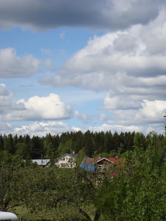 Ser ni vårt vita hus? och även ladugårdstaket skymtar.