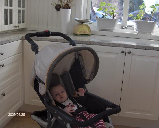 Vagn i vårt kök